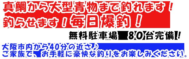 海上釣堀・海釣ぽ~と 田尻の公式サイトです。真鯛から大型青物まで釣れます!釣らせます!毎日爆釣!!